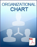 org_chart_download